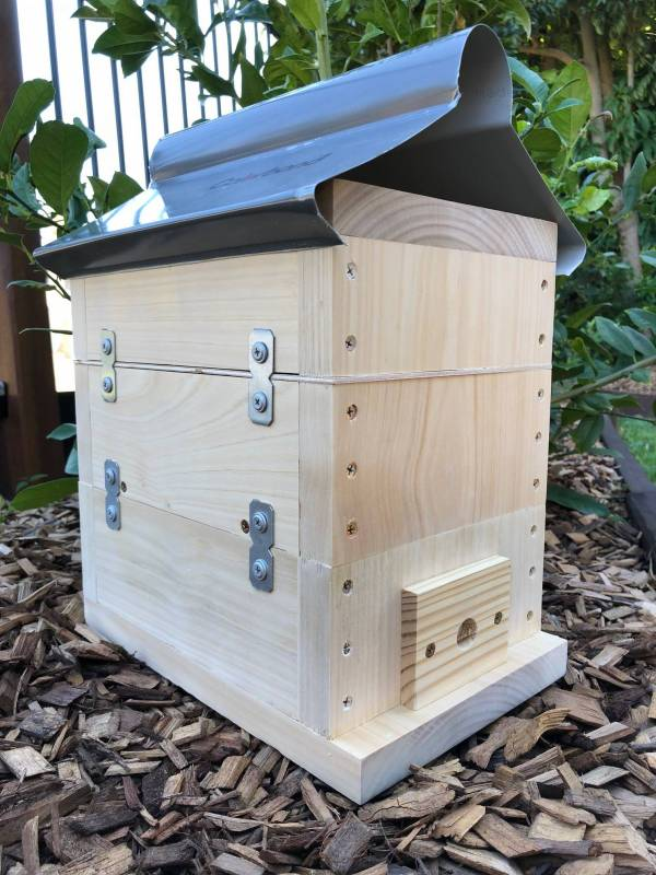 Native Bee Hive OATH Honey Super Roof Bare Timber (1)