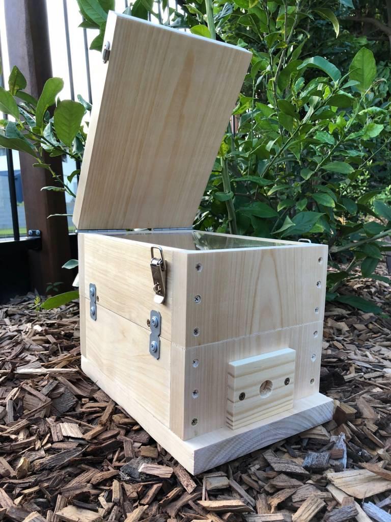 Bare Timber OATH BeeHive | Stingless Native Bee Hive ...
