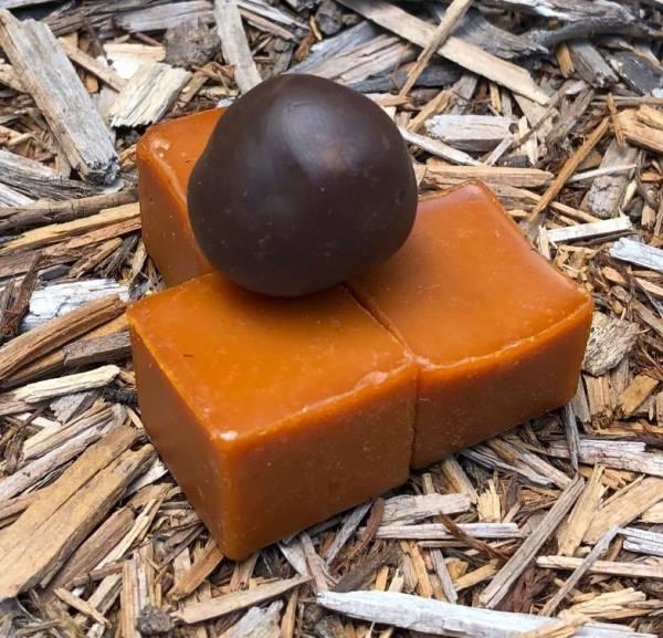 Propolis / Wax / Resin from Stingless Australian Native Bees